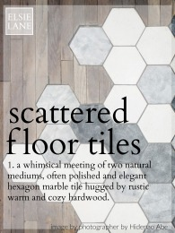 What are Scattered Floor Transitions? Why are they popular?